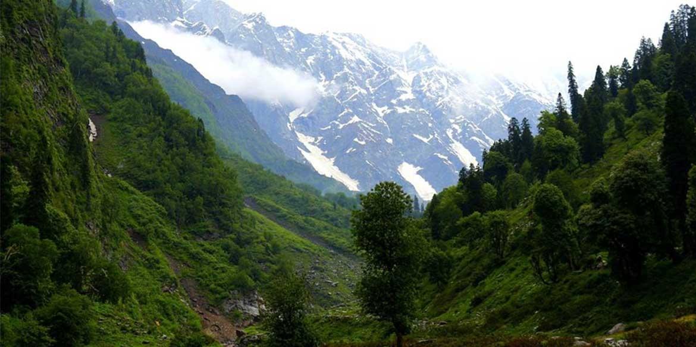 Yoga-Retreat-Himalyas-Manali-Bakerthach-Serene-Valley-3.jpg
