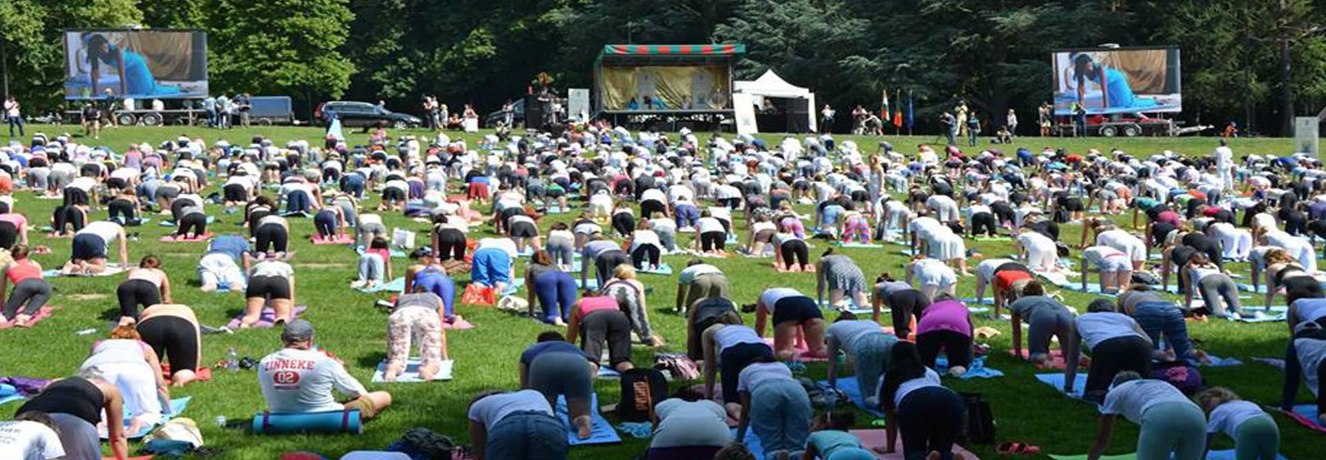 hith yoga