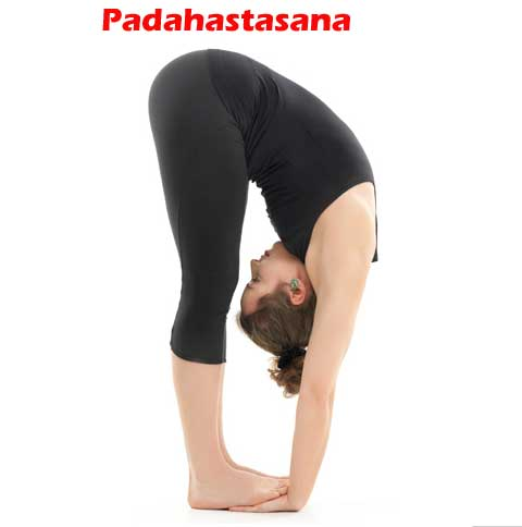 Padahastasana- Hand to Foot Pose
