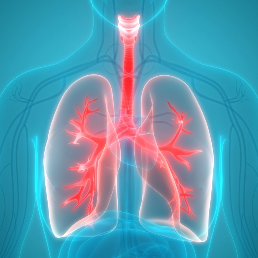 Yoga Poses to Help Boost Your Lung Health