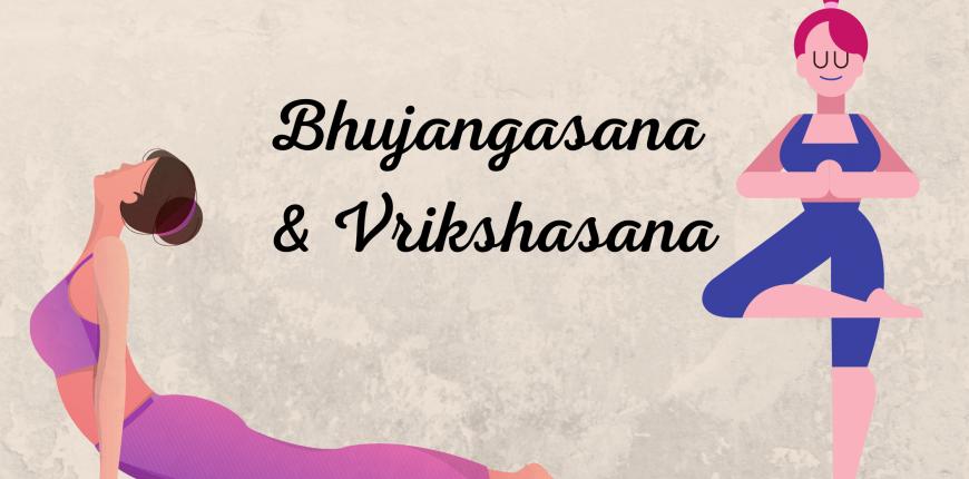 Note on Bhujangasana and Vrikshasana