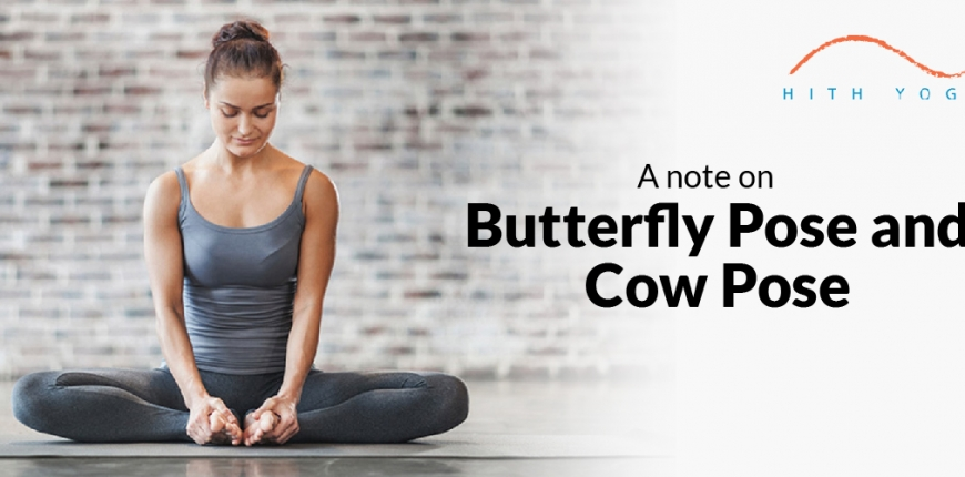 A Note on Butterfly Pose and Cow Pose