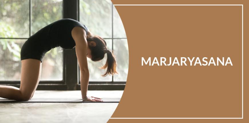 11 Benefits Of Marjaryasana (cat pose)